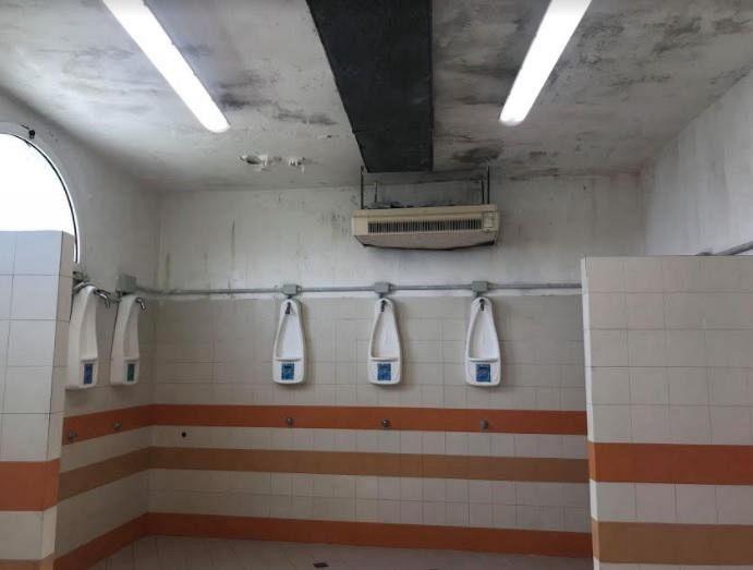 Muffa in piscina in atto la pulizia attualit pontedera for Piscina pontedera