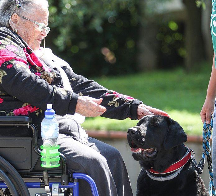 La Pet Therapy Entra Nella Residenza Per Anziani