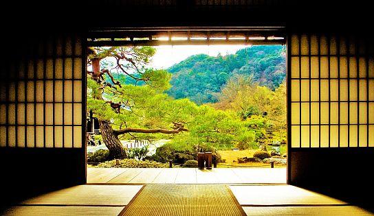 Ufficio Zen Quotidiano : Simply zen densifying advanced synergy trattamento anticaduta