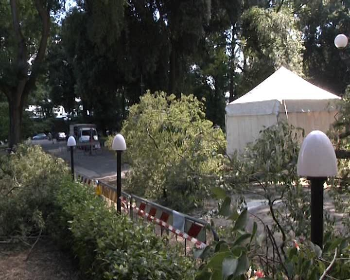 Ufficio Verde Pubblico Arezzo : Massimo ricci portavoce del movimento stelle arezzo home