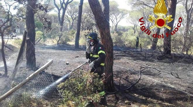 Castiglione della Pescaia, ancora fiamme vicino al campeggio