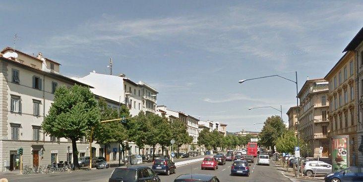 Centottanta nuovi alberi lungo i viali attualit firenze - Alberi adatti per viali ...