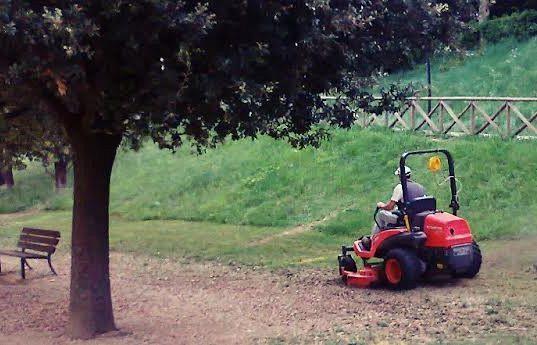Ufficio Verde Pubblico Arezzo : Green grass arezzo