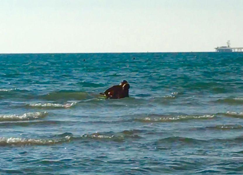 Sesso in mare in pieno giorno attualit rosignano m mo - Sesso lesbo in bagno ...