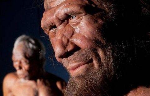 Archeologia: il menù dell'uomo di Neanderthal? Rinoceronte, muflone, funghi e pinoli
