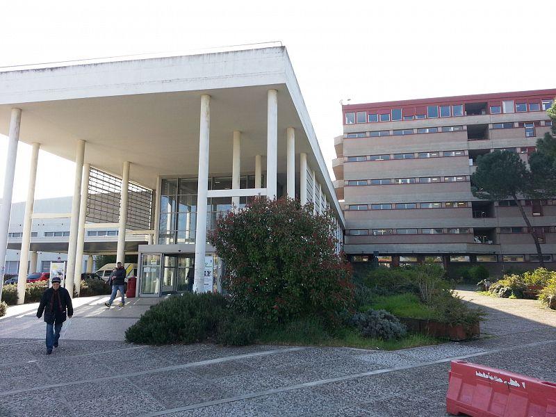 Firenze, muore bambina di 5 anni: Asl dispone accertamenti