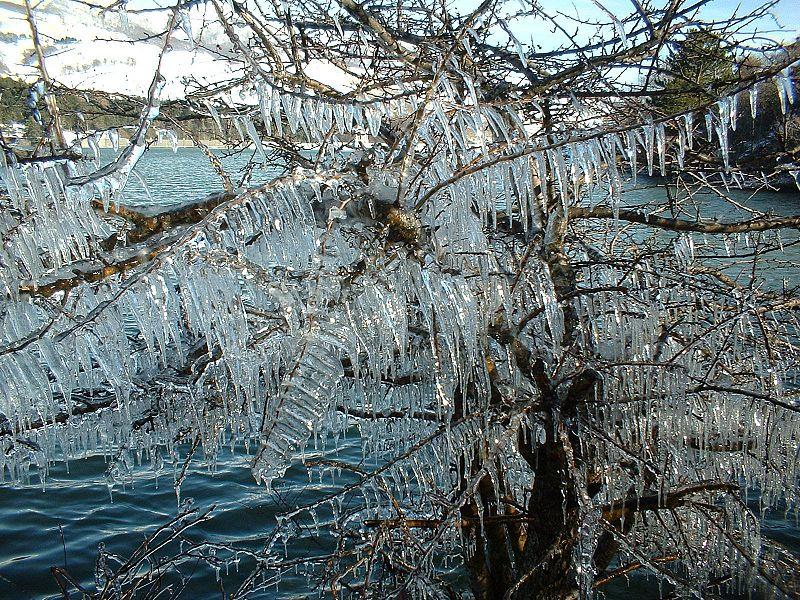 Neve, gelo e tormenta, è arrivato mister Burian