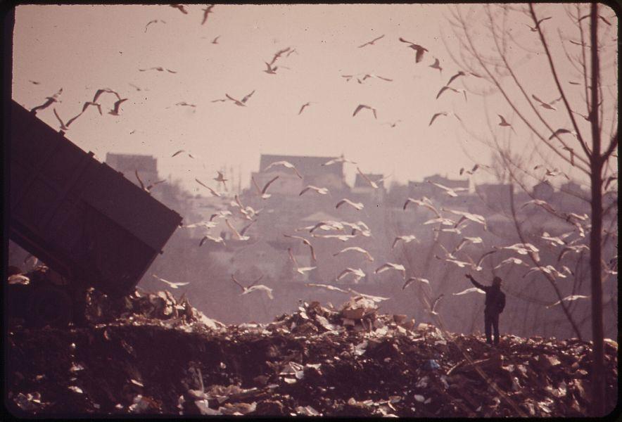 Traffico di rifiuti pericolosi in Toscana. Sei persone ai domiciliari