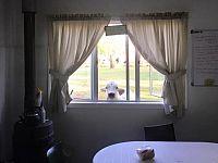 Scusate alla finestra ci sarebbe una mucca