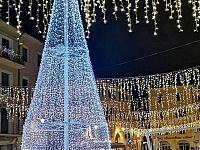 Albero ecologico 2018 in piazza Cavour a Portoferraio