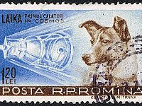 Per Laika un francobollo anche in Romania