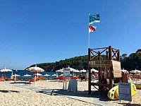 Bandiera Tartalove al Pino solitario sulla spiaggia di Fetovaia