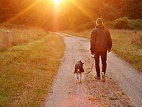 Il proprio cane è immagine di noi stessi
