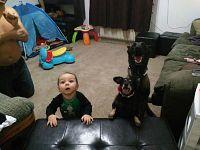 Il bimbo Elias e gli altri cuccioli di casa