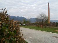 Chiara - San Giuliano Terme - (Pisa)