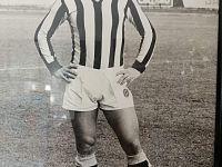 Mauro Fontanelli