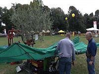 Una retre automatica per raccogliere le olive