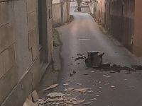 Comignolo divelto dal vento nel comune di Vicopisano