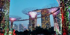 I left my heart in...Singapore