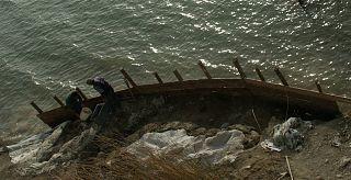 quali informazioni si incontri relativi fornire paleontologi siti di incontri Brantford