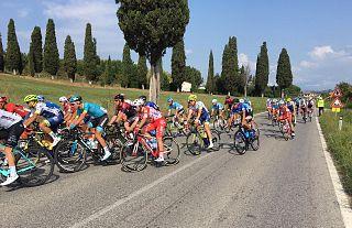 I ciclisti al bivio che da Selvatelle porta verso Terricciola