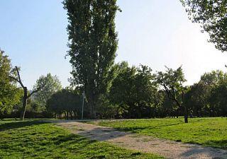 In foto un parco di Scandicci