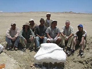 quali informazioni si incontri relativi fornire paleontologi indiano incontri eventi UK