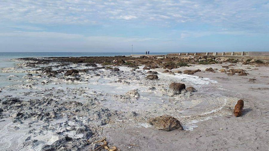Bagno Lillatro : Lillatro schiuma bianca ricopre la spiaggia attualità rosignano