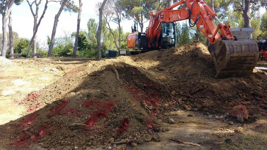 Ufficio Verde Comune Di Livorno : Maltempo domani parchi pubblici chiusi a livorno a causa del